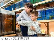 Woman with son looking for aquarium fishes. Стоковое фото, фотограф Яков Филимонов / Фотобанк Лори