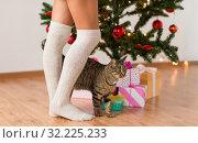 Купить «woman, cat and gift boxes under christmas tree», фото № 32225233, снято 15 октября 2016 г. (c) Syda Productions / Фотобанк Лори