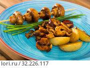 Купить «Assorted roasted mushrooms with potatoes», фото № 32226117, снято 10 июля 2020 г. (c) Яков Филимонов / Фотобанк Лори