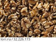 Купить «Dried kernels of walnuts», фото № 32226173, снято 20 января 2020 г. (c) Яков Филимонов / Фотобанк Лори