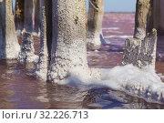 Кристаллы соли на древесине и белая пена в розовом озере Сасык-Сиваш недалеко от курортного города Евпатория в Крыму. Солнечный день (2019 год). Стоковое фото, фотограф Наталья Гармашева / Фотобанк Лори