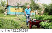 Купить «Elderly gray-haired man working in the garden», видеоролик № 32230389, снято 13 июля 2020 г. (c) Яков Филимонов / Фотобанк Лори