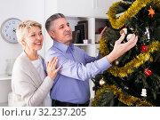 Mature friends are hang up New Year's toys on a fir-tree. Стоковое фото, фотограф Яков Филимонов / Фотобанк Лори