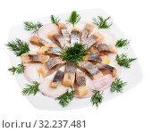 Купить «Marinated herring with sliced onion and dill», фото № 32237481, снято 22 октября 2019 г. (c) Яков Филимонов / Фотобанк Лори