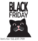 Big sale. Black Friday banner. Cute black cat with white mustache and mysterious smile. An invitation to big sale of goods on Black Friday. Template for designers. Vector illustration. Стоковая иллюстрация, иллюстратор Dmitry Domashenko / Фотобанк Лори