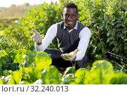 Man proud of harvest of Swiss chard. Стоковое фото, фотограф Яков Филимонов / Фотобанк Лори