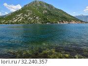 Купить «Summertime landscape in Kotor bay in Montenegro», фото № 32240357, снято 10 июня 2019 г. (c) Володина Ольга / Фотобанк Лори