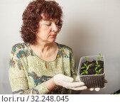 Купить «A female gardener shows a pot with sprouts after a pick.», фото № 32248045, снято 3 апреля 2016 г. (c) Акиньшин Владимир / Фотобанк Лори