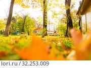 Купить «Кленовые листья на траве», фото № 32253009, снято 3 октября 2019 г. (c) Кристина Викулова / Фотобанк Лори