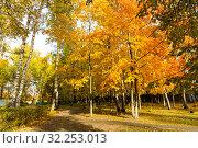 Купить «Парк в г.Орехово-Зуево», фото № 32253013, снято 3 октября 2019 г. (c) Кристина Викулова / Фотобанк Лори