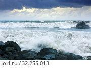 Купить «sea wave during storm», фото № 32255013, снято 21 октября 2019 г. (c) Яков Филимонов / Фотобанк Лори