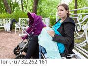 Кормящая ребенка мать в парке на скамейке. Стоковое фото, фотограф Кекяляйнен Андрей / Фотобанк Лори