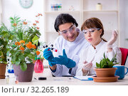 Купить «Two young botanist working in the lab», фото № 32265189, снято 6 марта 2019 г. (c) Elnur / Фотобанк Лори