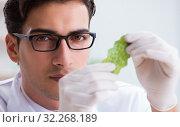 Купить «Biotechnology scientist chemist working in lab», фото № 32268189, снято 8 ноября 2017 г. (c) Elnur / Фотобанк Лори