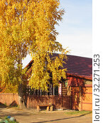 Купить «Деревянный дом», эксклюзивное фото № 32271253, снято 8 октября 2019 г. (c) Елена Осетрова / Фотобанк Лори