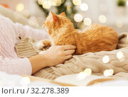 Купить «close up of owner with red cat in bed at home», фото № 32278389, снято 15 ноября 2017 г. (c) Syda Productions / Фотобанк Лори