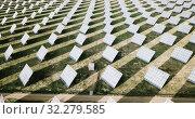 Купить «Aerial view of solar panels of modern photovoltaic power station», видеоролик № 32279585, снято 26 декабря 2018 г. (c) Яков Филимонов / Фотобанк Лори