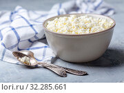 Fresh cottage cheese in a bowl. Стоковое фото, фотограф Марина Сапрунова / Фотобанк Лори