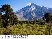 Купить «View of Lanin Volcano in National Park of Argentina», фото № 32305757, снято 6 февраля 2017 г. (c) Яков Филимонов / Фотобанк Лори