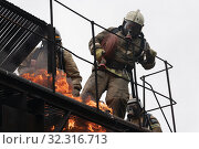 Купить «Firefighters of Fire Department of Federal Fire Service in Kamchatka Territory during fire extinguishing, training to overcome fire zone of psychological training for firefighters», фото № 32316713, снято 7 августа 2019 г. (c) А. А. Пирагис / Фотобанк Лори