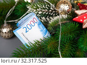 Купить «Money is hidden in the branches of a Christmas tree.», фото № 32317525, снято 27 декабря 2018 г. (c) Елена Блохина / Фотобанк Лори