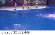 Купить «Presentation (Show) VDNKh Moskvarium - the biggest in Europe sea aquarium and entertainment center, Moscow, Russia», видеоролик № 32352449, снято 29 октября 2019 г. (c) Владимир Журавлев / Фотобанк Лори