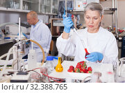 Купить «Woman biochemist checking fruits and vegetables», фото № 32388765, снято 24 января 2019 г. (c) Яков Филимонов / Фотобанк Лори