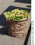 Декоративный вазон с цветами Настурции на территории монастыря (2010 год). Редакционное фото, фотограф lana1501 / Фотобанк Лори