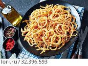 Купить «crispy fried onions served on a plate», фото № 32396593, снято 18 сентября 2019 г. (c) Oksana Zh / Фотобанк Лори