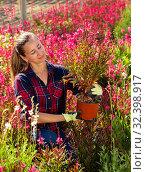 Купить «Florist woman working with blooming plants», фото № 32398917, снято 13 ноября 2019 г. (c) Яков Филимонов / Фотобанк Лори