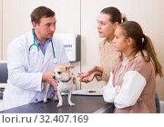 Купить «Concerned family with dog consulting by veterinarian», фото № 32407169, снято 13 сентября 2019 г. (c) Яков Филимонов / Фотобанк Лори