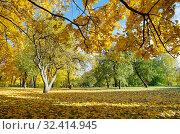 Купить «Осенний пейзаж солнечным днем», фото № 32414945, снято 12 октября 2018 г. (c) Елена Коромыслова / Фотобанк Лори