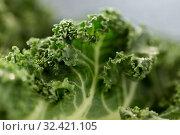 Купить «close up of kale cabbage on table», фото № 32421105, снято 12 апреля 2018 г. (c) Syda Productions / Фотобанк Лори