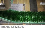 Купить «Bottling room of beer bottling line at factory», видеоролик № 32421949, снято 10 октября 2019 г. (c) Яков Филимонов / Фотобанк Лори