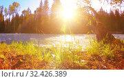 Купить «Meadow at mountain river bank. Landscape with green grass, pine trees and sun rays. Movement on motorised slider dolly.», видеоролик № 32426389, снято 21 февраля 2019 г. (c) Александр Маркин / Фотобанк Лори