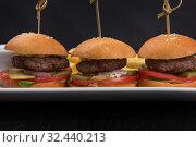 Mini hamburgers, mini burgers. Стоковое фото, фотограф Jan Jack Russo Media / Фотобанк Лори