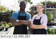 Купить «Two gardeners in greenhouse», фото № 32440381, снято 19 апреля 2018 г. (c) Яков Филимонов / Фотобанк Лори