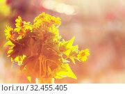 Купить «Close-up shot of the beautiful flowers. Suitable for floral background.», фото № 32455405, снято 21 января 2020 г. (c) easy Fotostock / Фотобанк Лори