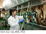 Купить «Farm milkmaid in bathrobe in barn with automatical cow milking machines», фото № 32455753, снято 13 декабря 2019 г. (c) Яков Филимонов / Фотобанк Лори