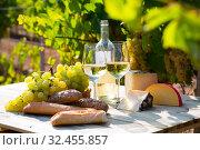 Wineglasses of wine on vineyard background. Стоковое фото, фотограф Яков Филимонов / Фотобанк Лори