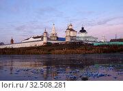 Купить «Коломна, Бобреневский монастырь поздней осенью», фото № 32508281, снято 23 ноября 2019 г. (c) Natalya Sidorova / Фотобанк Лори