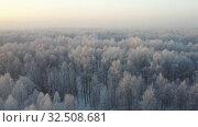 Купить «Aerial video view from drone of a Sunrise over snowy winter forest landscape. Birch forest under hoarfrost in winter season.», видеоролик № 32508681, снято 7 ноября 2019 г. (c) Serg Zastavkin / Фотобанк Лори