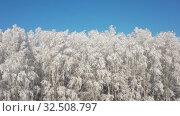 Купить «Aerial video view from sideways moving drone of birch forest under hoarfrost in winter season», видеоролик № 32508797, снято 7 ноября 2019 г. (c) Serg Zastavkin / Фотобанк Лори