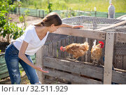 Купить «Farmer woman feeding chikens in a hen house», фото № 32511929, снято 23 января 2020 г. (c) Яков Филимонов / Фотобанк Лори