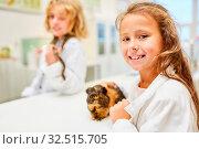 Kinder erforschen Meerschweinchen im Biologie Unterricht der Grundschule. Стоковое фото, фотограф Zoonar.com/Robert Kneschke / age Fotostock / Фотобанк Лори