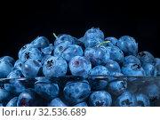 Fresh blueberries in in glassware on black background. Close-up of Bog bilberry, bog blueberry, northern bilberry or western blueberry (Vaccinium uliginosum) Стоковое фото, фотограф Некрасов Андрей / Фотобанк Лори