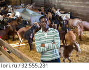 Confident African-American man in goat barn. Стоковое фото, фотограф Яков Филимонов / Фотобанк Лори