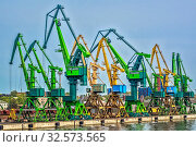 Купить «Bank Of Cranes In The Harbour Klaipeda, Lithuania», фото № 32573565, снято 11 июля 2020 г. (c) age Fotostock / Фотобанк Лори