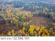 Autumnal aerial view in Wiaczyn Nature Reserve in Nowosolna County in Lodz Voivodeship of Poland. Стоковое фото, фотограф Konrad Zelazowski / easy Fotostock / Фотобанк Лори