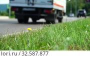 Купить «Car, bus rides on road. Blurred background. Close up shot, focused on grass in foreground. Summer day, car traffic in provincial town. Handheld shoot near roadside», видеоролик № 32587877, снято 20 августа 2018 г. (c) Dmitry Domashenko / Фотобанк Лори
